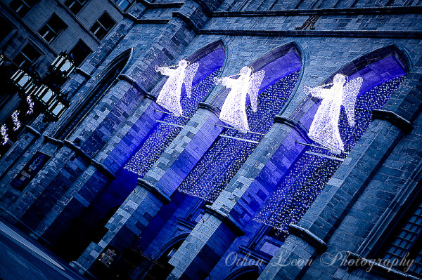Cathedral Montréal