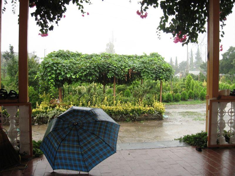 rainy rainy rain