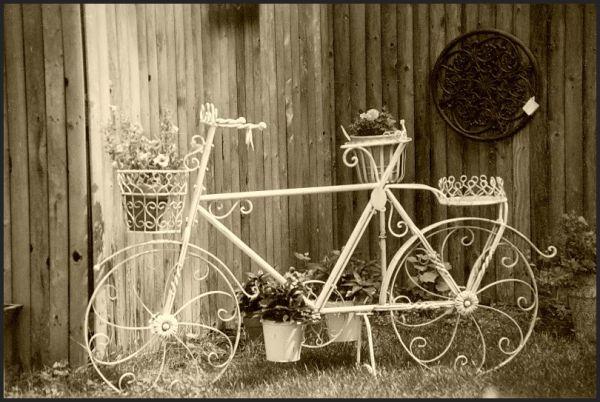 Biking in the past