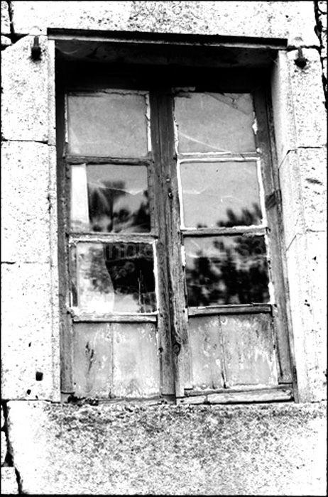 La fenêtre de Cécile