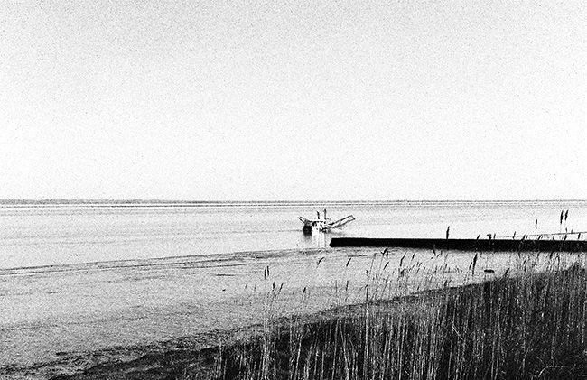 Pêche sur l'estuaire - Gironde - France