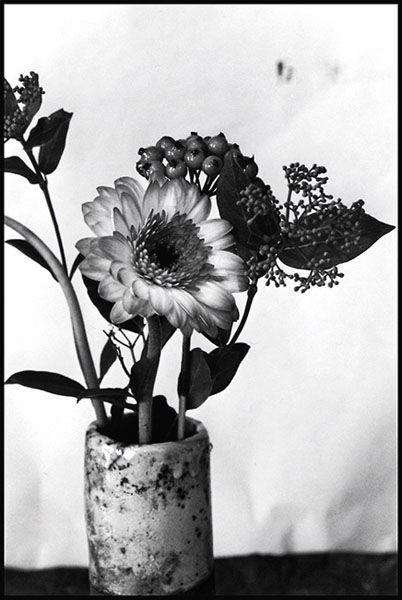 Fleurs dans un vase raku