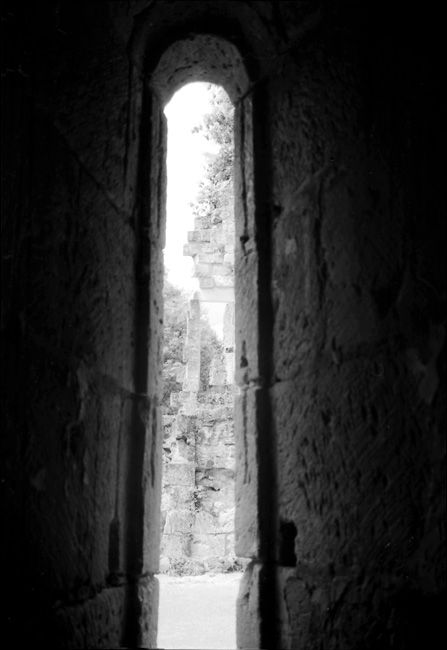 Abbaye de Boschaud - vue 1 -
