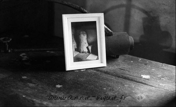 Photo de l'exposition - Moulin du Duellas - 24