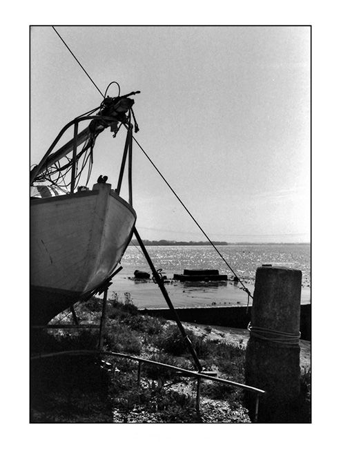 Bateau  -  Port de Bourg sur Gironde