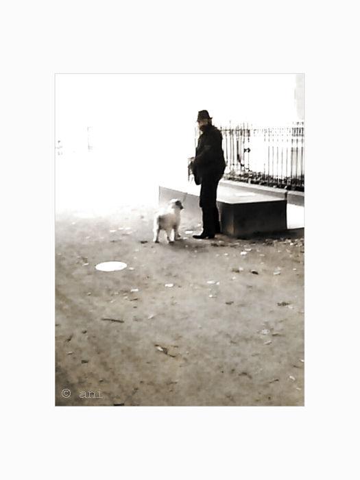 L'homme au petit chien