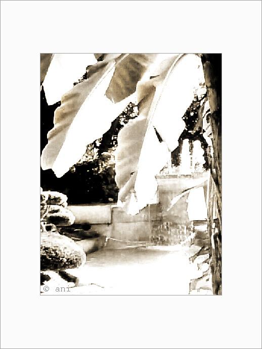 Périgueux - Le jardin des Arènes -