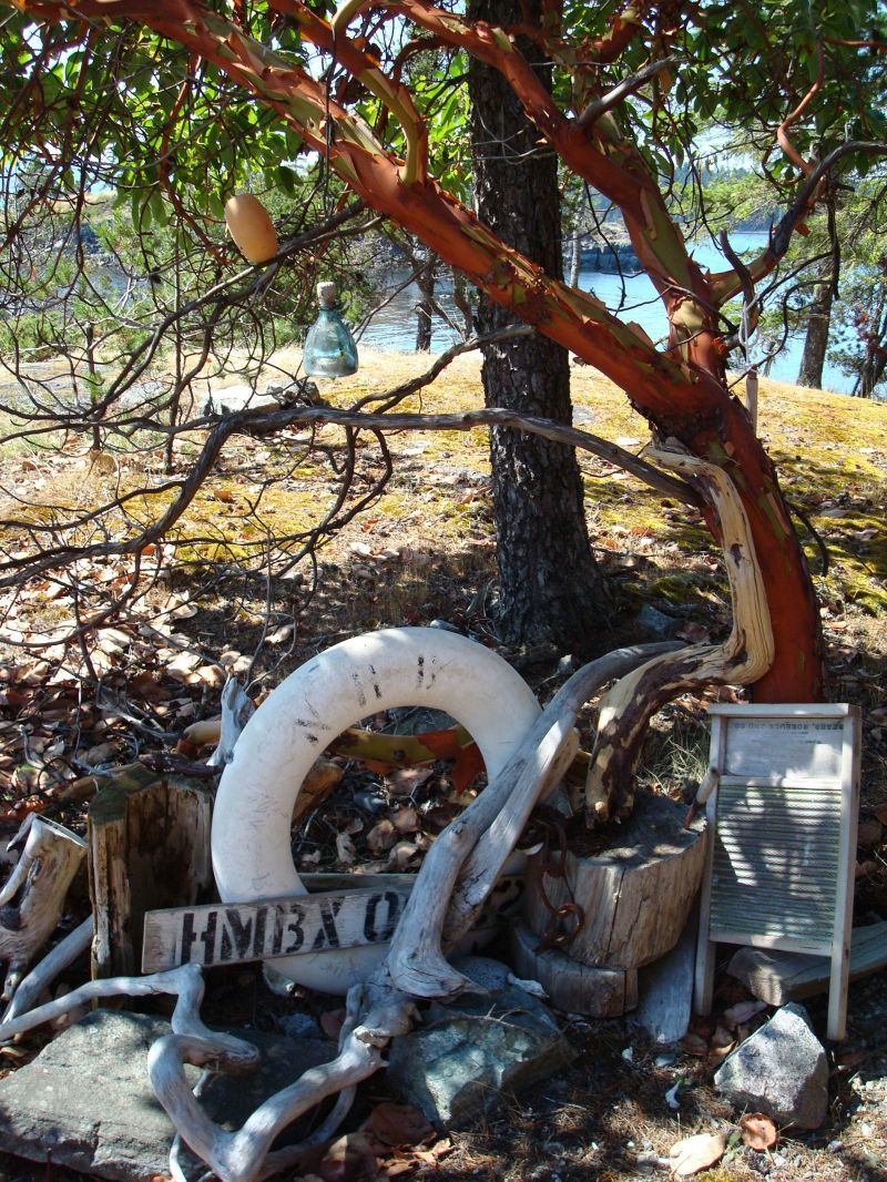 a pile of driftwood and antiques