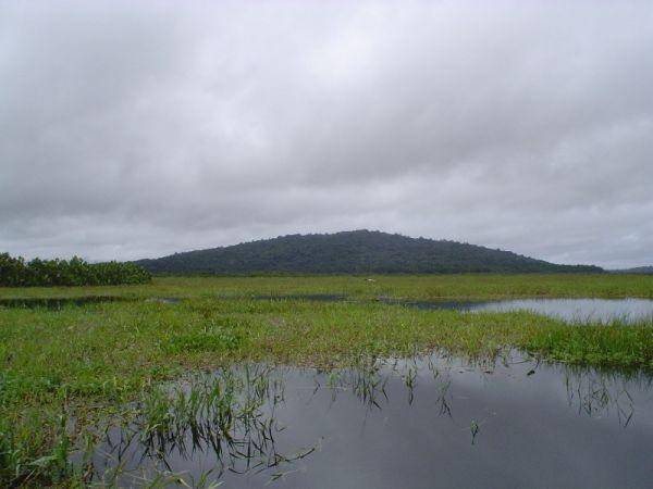 el campo en la Guiana Francesa