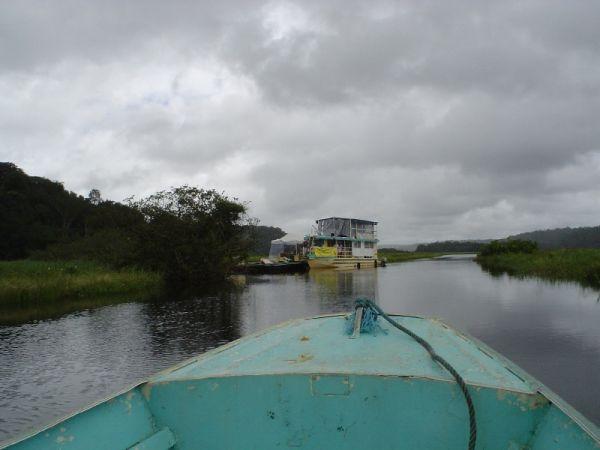 campo en la Guiana Francesa ; vista desde el rio