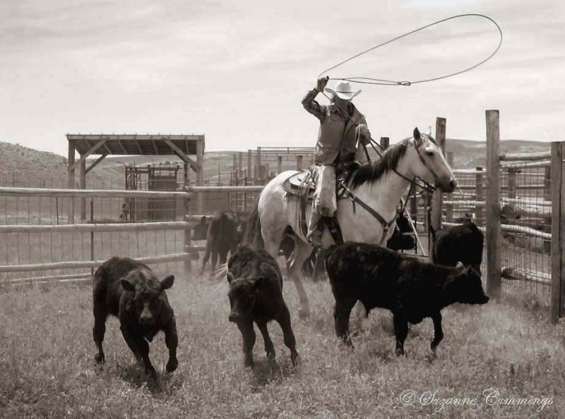 Kim Crago, Willow Creek Ranch, Wyoming