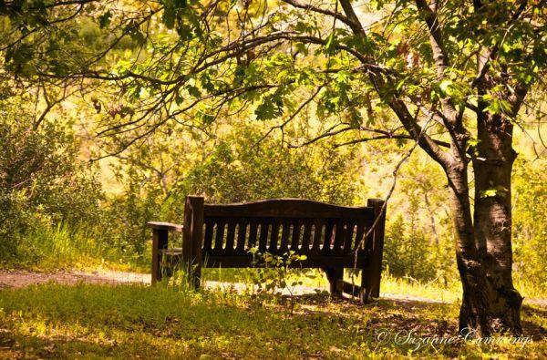 Descanso Gardens, La Canada-Flintridge, CA
