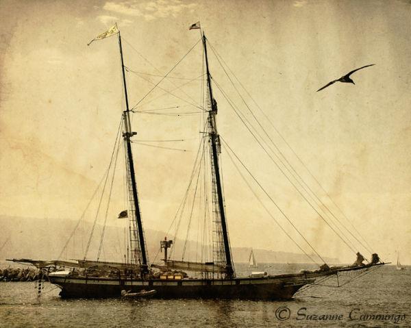 Tall ship Californian