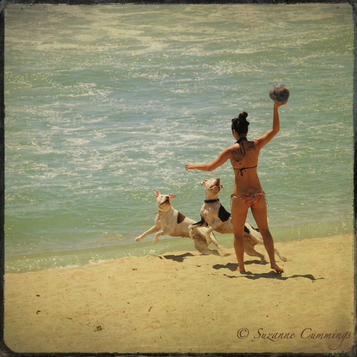 Girls playing catch with 2 dogs on the beach