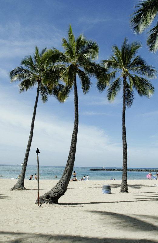 Typical Honolulu (I)