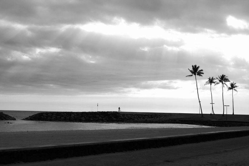 Typical Honolulu (III)