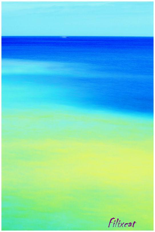 Yin-yang Sea 4
