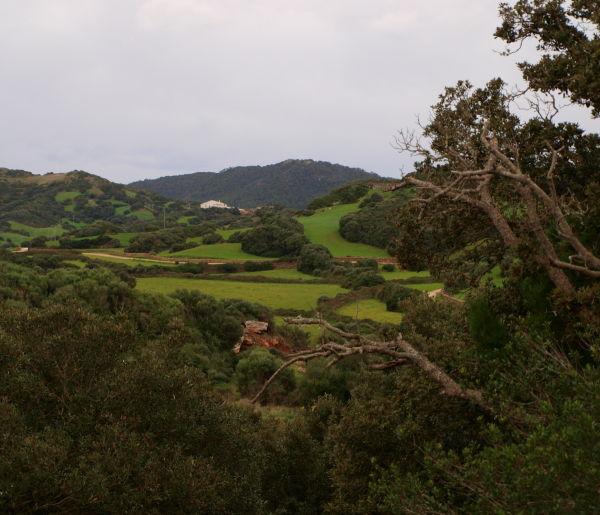 Imagen de Menorca en color verde