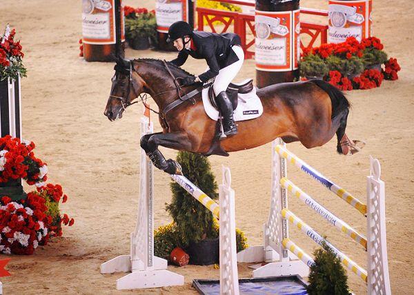 equestrian, horse, horse jumping, penn national