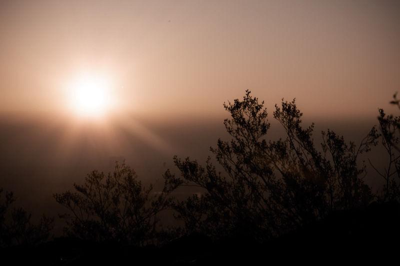 Waking Sun