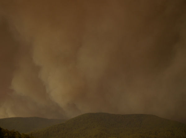 bushfire #2