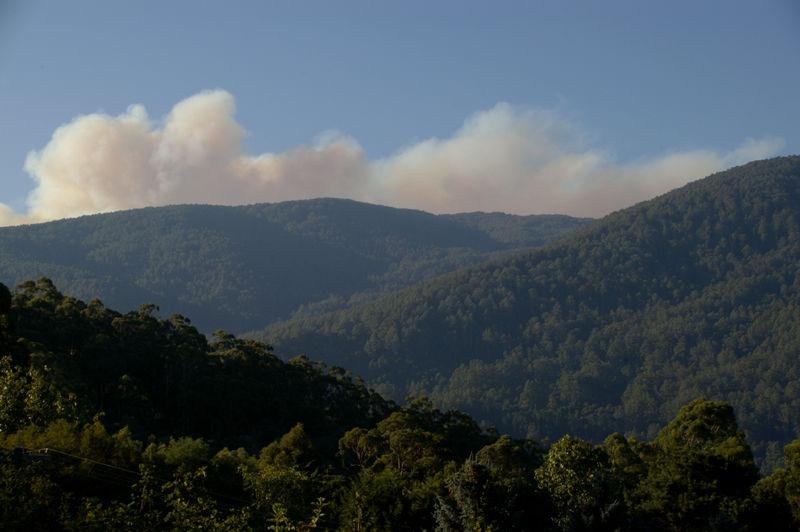 Bushfire - further update