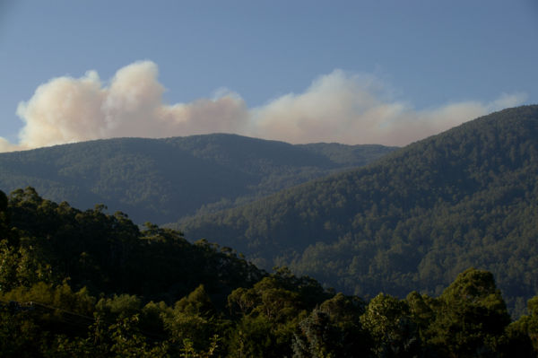 Bushfire - further update