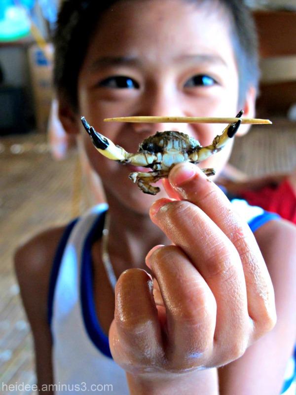 Crab, kid