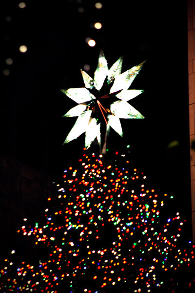 One day in NYC :: X'mas tree at Rockefeller center