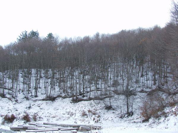 winter on Greek mountains
