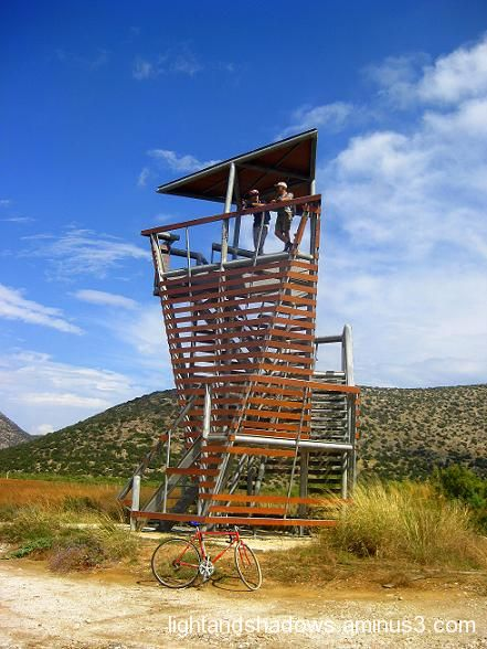 schinias natural park observation tower