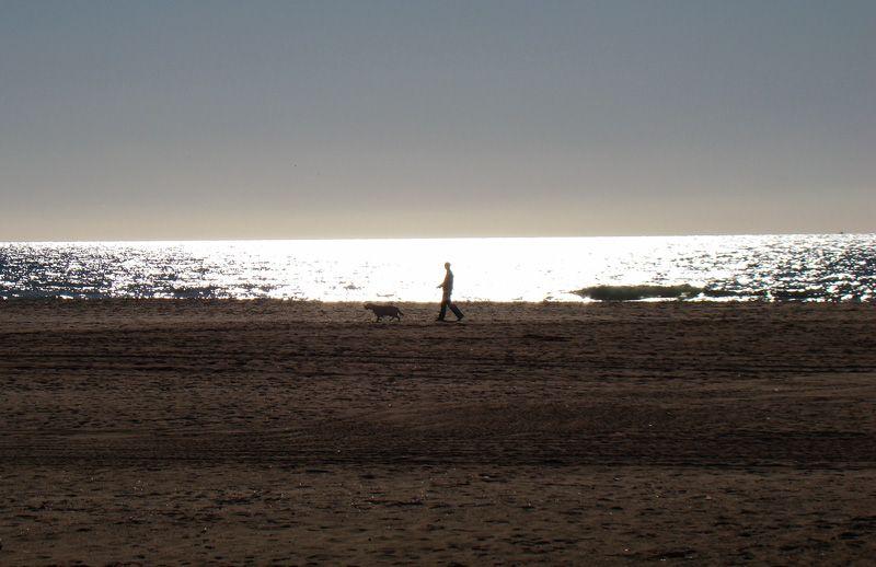 Dos amigos junto al mar