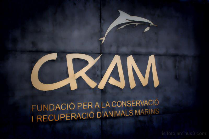 CRAM, conservació i recuperació del medi marí