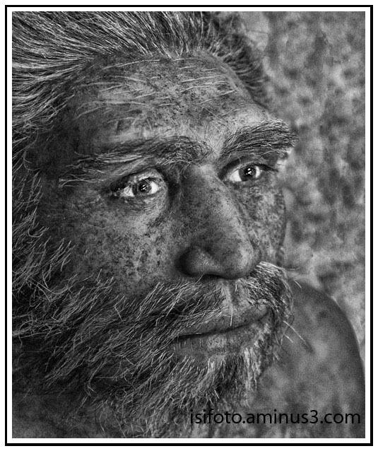 Homo sapiens 02