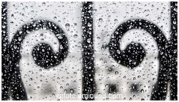 Pluja - Rain 02