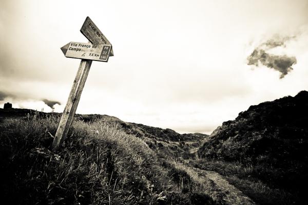Sometimes choosing the best road isn't easy