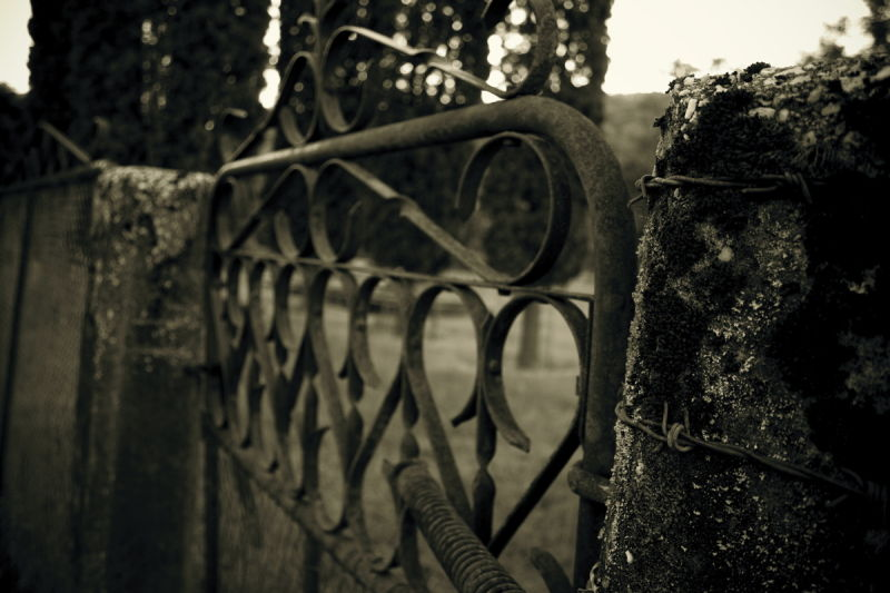 Chines cemetary, Bright, Rural, Gate, Rusty