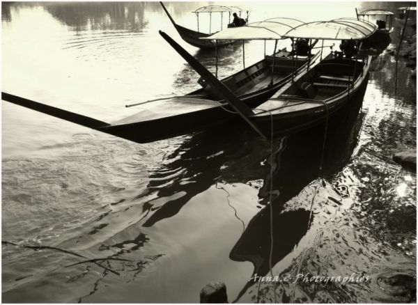 Dream on the river Kok