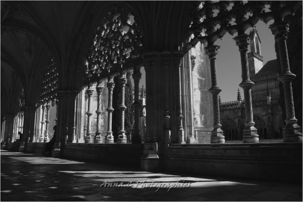 Silent cloister