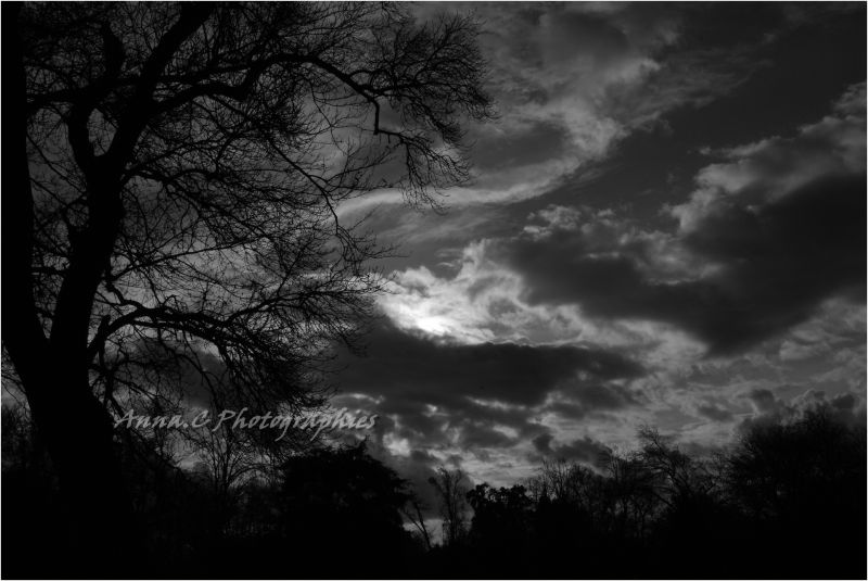 Dans la tourmente - ( in the storm )