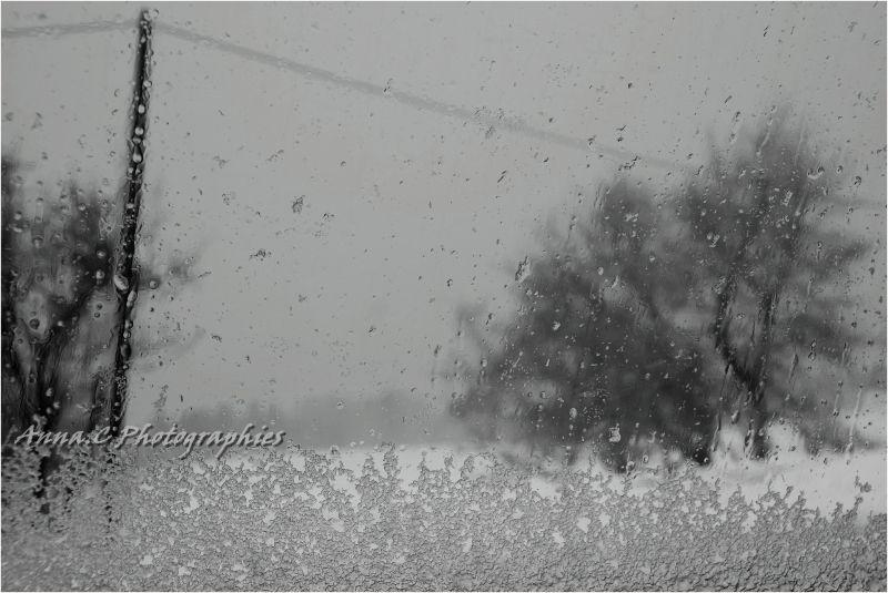 Dans la tempête de neige