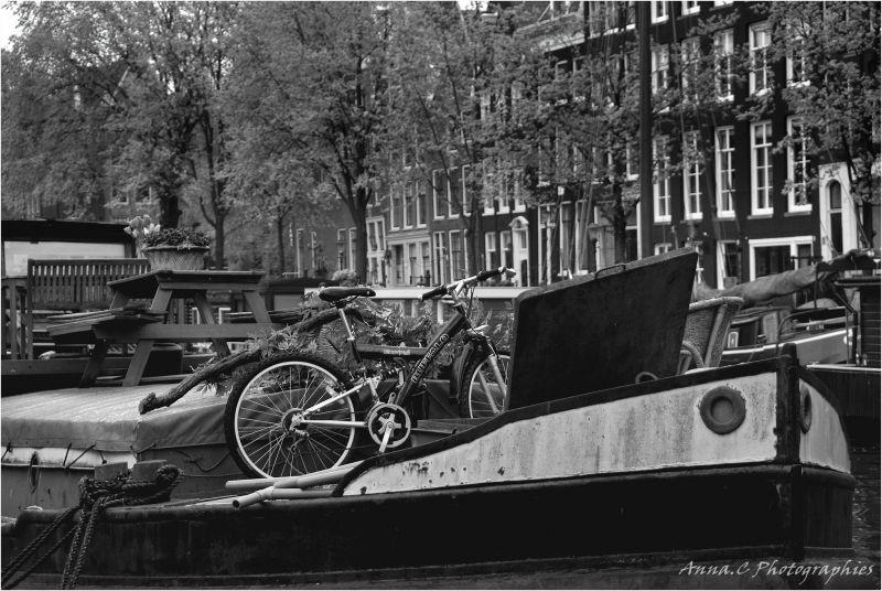 Houseboat # 2