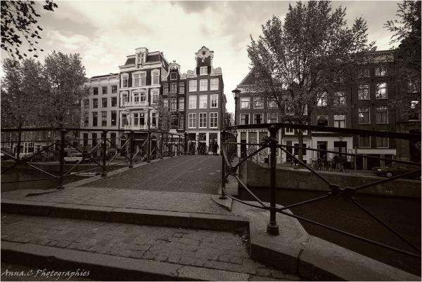 Sur les ponts d'Amsterdam...3/3