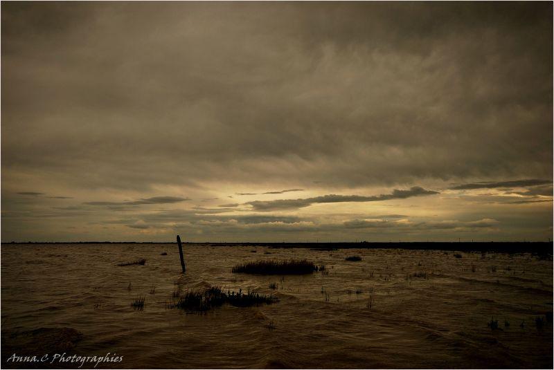 Les eaux mêlées