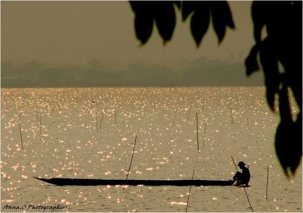 Pêcheur de lumière au Lac Phayao