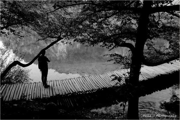 le chemin zen