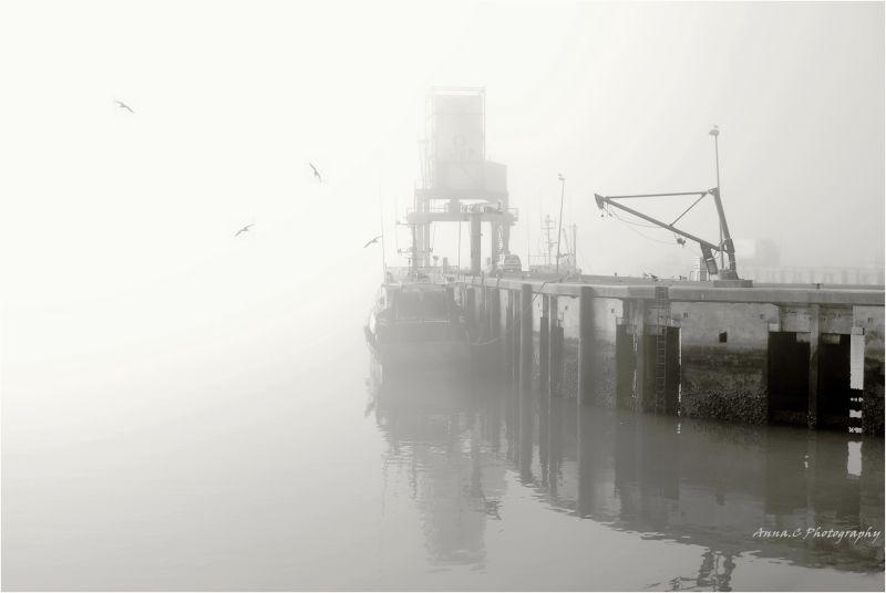 Un port dans la brume #1