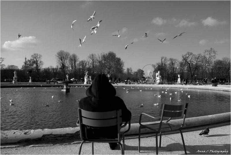 Un air d'Océan aux Tuileries