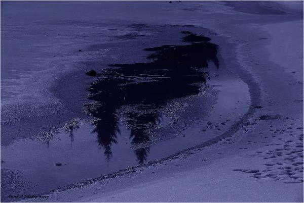 Blue winter dream