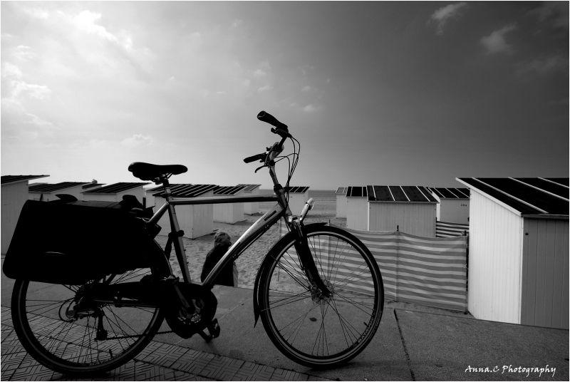 Laissez les vélos en dehors de la plage S.V.P !